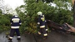Powiat sztumski. Gwałtowna burza połamała kilka drzew – 01.06.2016
