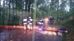 Chwile grozy na trasie Prakwice – Lubochowo. Przed nadjeżdżającego busa spadło drzewo. Weekendowy raport sztumskich służb mundurowych – 27.06.2016