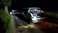 Przebiegające zwierzę sprawcą wypadku? Przyczyny zdarzenia drogowego w Poliksach wyjaśnia policja – 08.07.2016