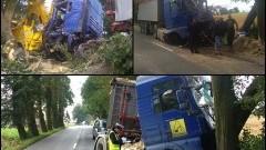 Ciężarówka uderzyła w cztery drzewa na DW 515 w Dąbrówce Malborskiej. Weekendowy raport służb mundurowych powiatu sztumskiego – 11.07.2016
