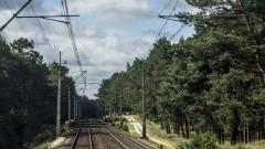 PKP: Lis i borsuk w kolejowej fotopułapce - 06.10.2016