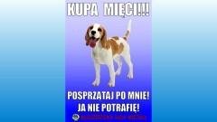 """Dzierzgoń: Miejska akcja """"Kupa mięci — Twój pies, Twój obowiązek - ETAP 2 - 16.06.2017"""