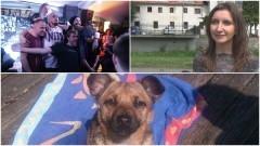Dzierzgoń: Podaj Łapę czyli impreza dla posiadaczy psów i nie tylko! - 01.07.2017