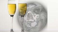 Alkohol Twoim wrogiem. Plan spotkań profilaktycznych i treningów psychologicznych MGOPS w Sztumie – 21-27.09.201