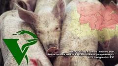 Nakazy i zakazy w chowie i hodowli świń. Rozporządzenia MRiRW w sprawie środków podejmowanych wz. z wystąpieniem ASF - 16.02.2018
