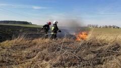 Kilkanaście pożarów łąk, lasów, nieużytków. To już prawdziwa plaga... Raport weekendowy sztumskiej straży pożarnej