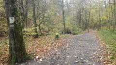 Elbląg: Zsunął się do zimnego potoku. Szybka pomoc grzybiarza i leśniczego uratowała starszego mężczyznę.