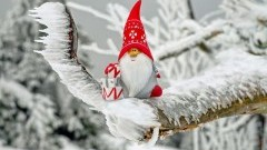 Jarmark Bożonarodzeniowy w Dzierzgoniu.