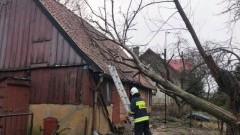 Dworek: Połamane drzewo spadło na dom. Kolejne skutki wichury.