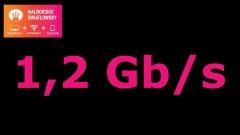 Malborskie Światłowody z internetem 1,2 Gb/s