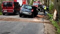 4 – letnie dziecko trafiło do szpitala po uderzeniu samochodu w drzewo.