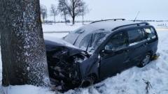 DK22. W wyniku zderzenia z drzewem, kierowca trafił do szpitala.