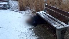 Malbork. Śmierć w parku na Osiedlu Południe. Sekcja zwłok wyjaśni przyczyny.