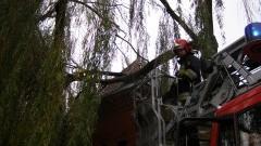 Usuwanie skutków wichury w powiecie malborskim. Powalony konar drzewa na dachu poczty przy 17 Marca w Malborku – 09.11.2015