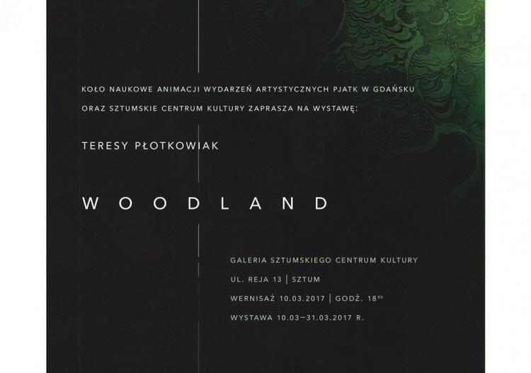 Sztum: Wystawa Teresy Płotkowiak. Impresje typograficzno-ilustracyjne – 10.03.2017