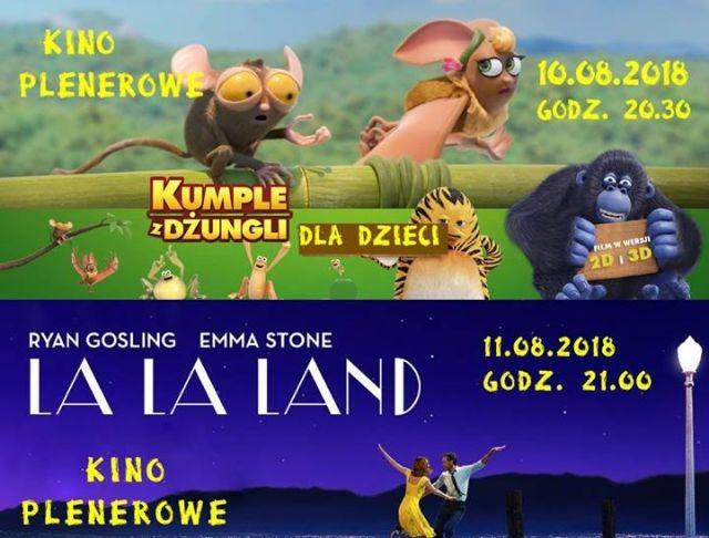 Weekendowe propozycje kina plenerowego w Nowym Dworze Gdańskim.