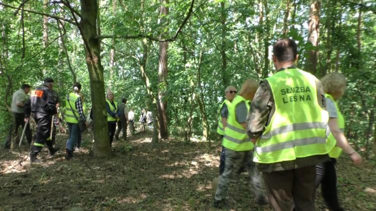 ASF coraz bliżej. Ćwiczenia mają usprawnić działania. W lesie szukano padłych dzików.