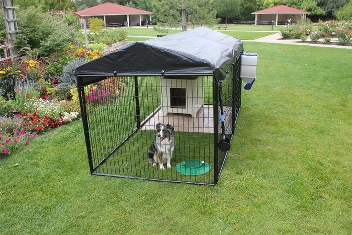 Gdzie ustawić kojec dla psa?