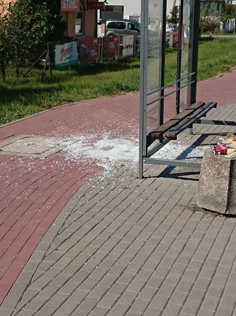 Malbork: Kto posprząta szkła? Czyli zbita szyba na przystanku autobusowym.