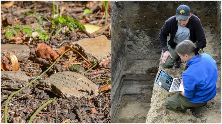 Leśnicy z Nadleśnictwa Elbląg odkryli osadę z epoki kamienia?