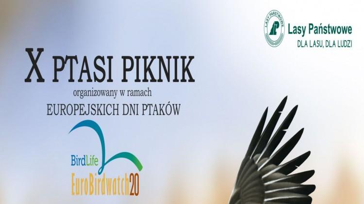 Nietypowa forma tegorocznego październikowego Ptasiego Pikniku w lasach Mierzei Wiślanej.