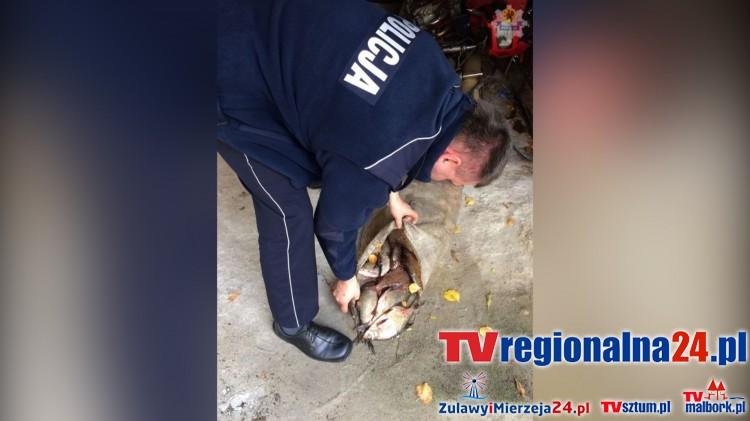 Do dwóch lat więzienia grozi mężczyźnie, który kłusował na Nogacie w Białej Górze – 28.10.2015