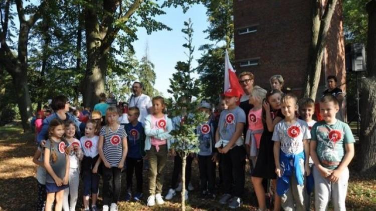 Dzierzgoń: Uczniowie posadzili 100 drzew z okazji 100. rocznicy Odzyskania…