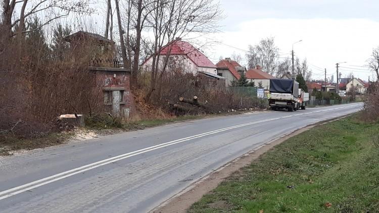 Ruszyły prace związane z przebudową drogi 515. Wycinka drzew w Nowej…