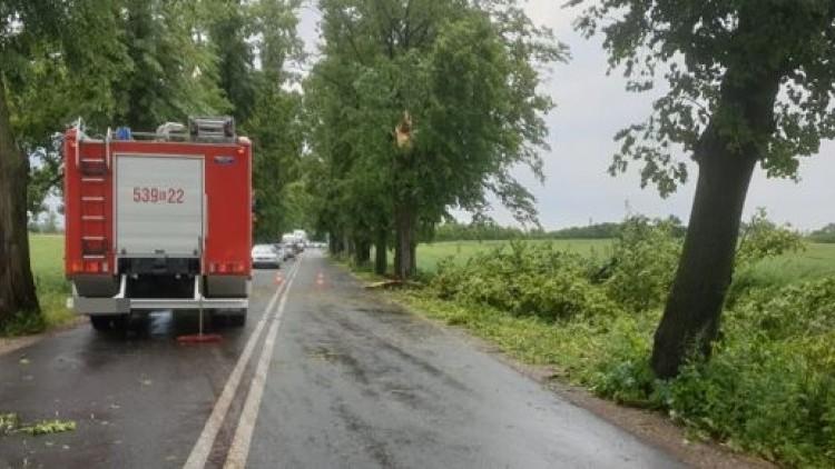 Powiat sztumski: Powalone drzewa, uszkodzone dachy i nie tylko. 72 interwencje…