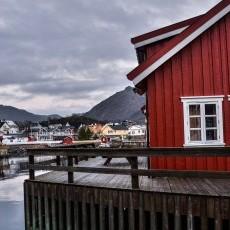 Praca w Norwegii. Kierowca