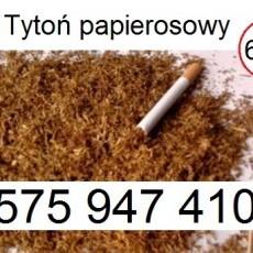 Tani tytoń 1kg dobry tytoń papierosowy 65zl/kg